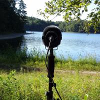 Recording at Walden Pond
